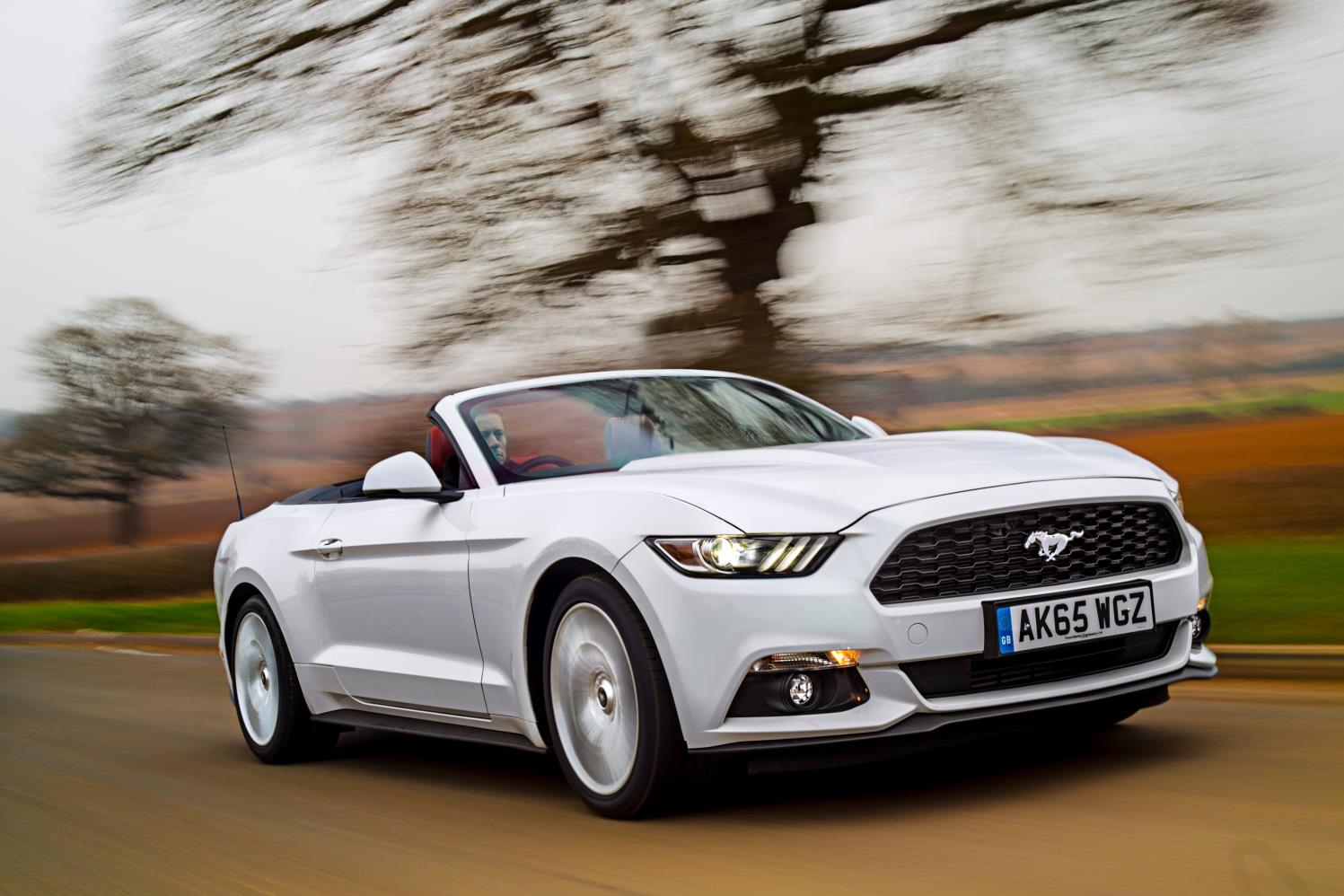 Ford Mustang con